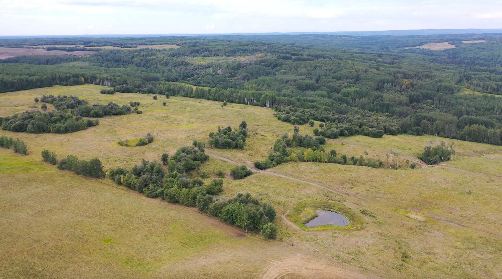 Dawson creek ranch 17