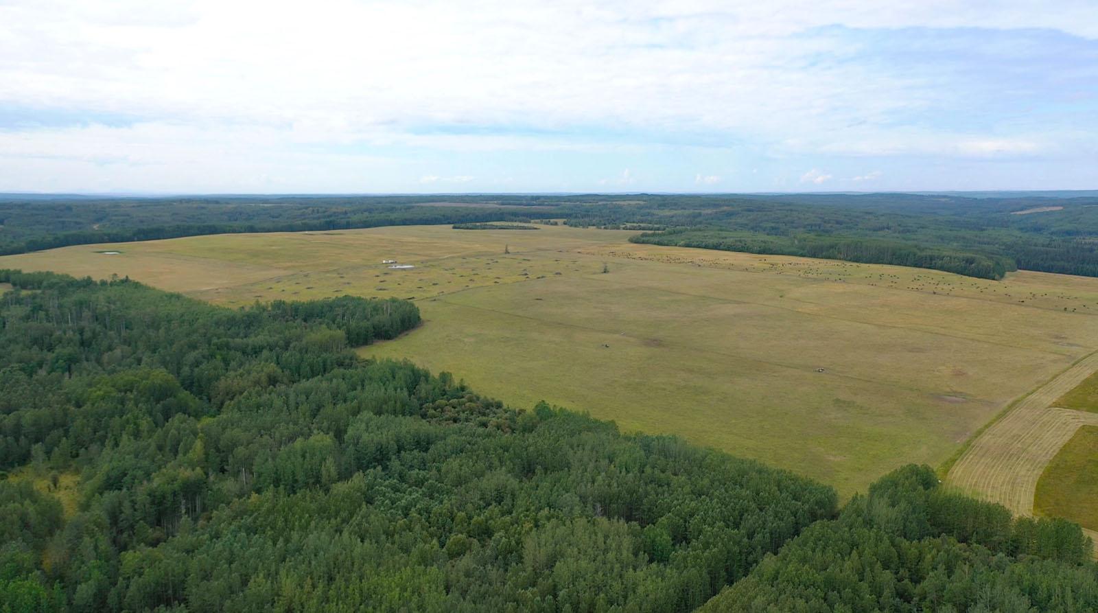 Dawson creek ranch 18