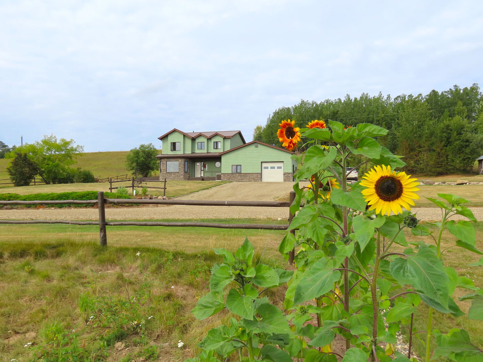 Dawson creek ranch 70