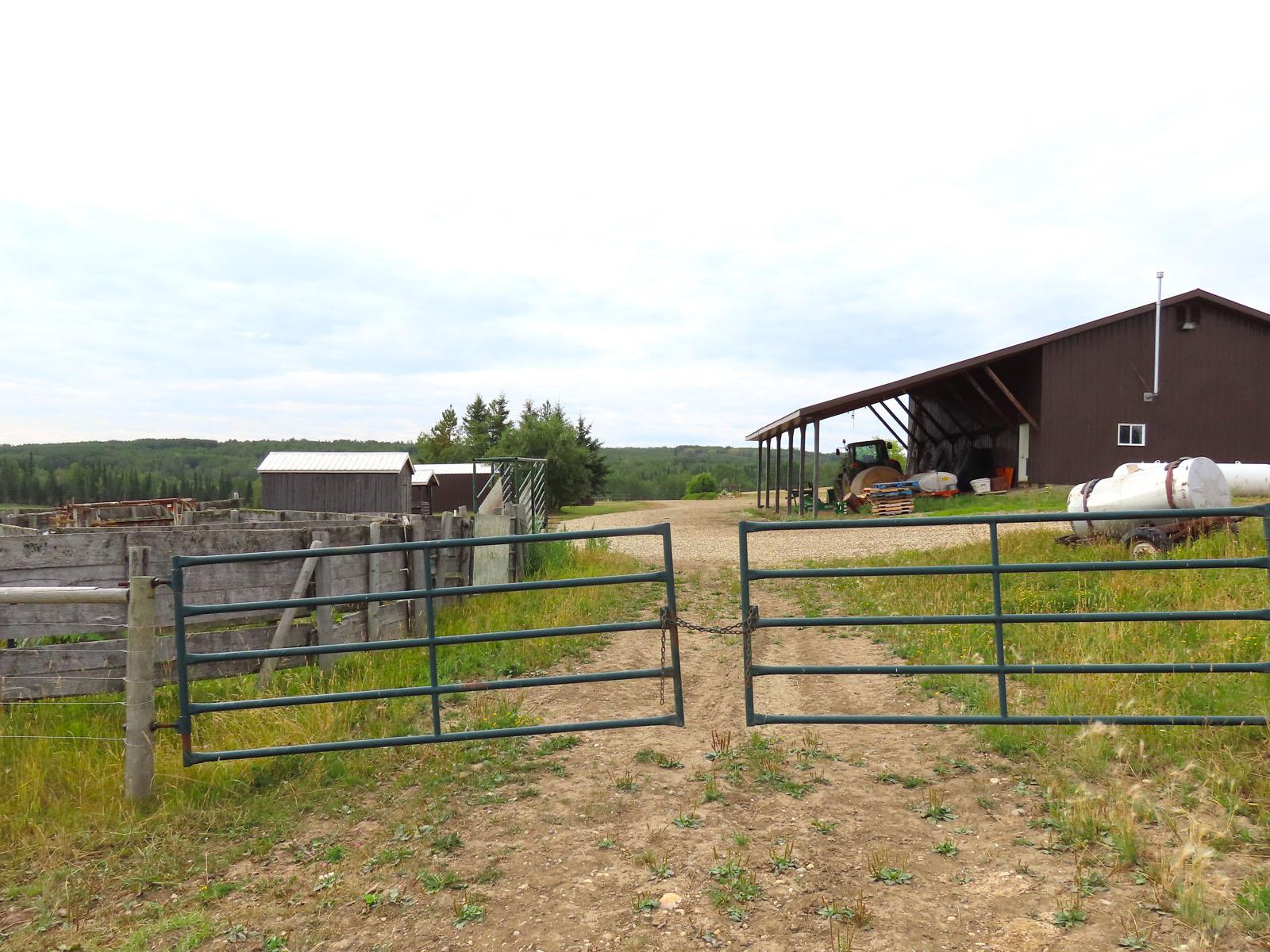 Dawson creek ranch 85