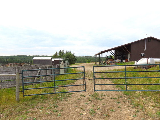 Thumb dawson creek ranch 85