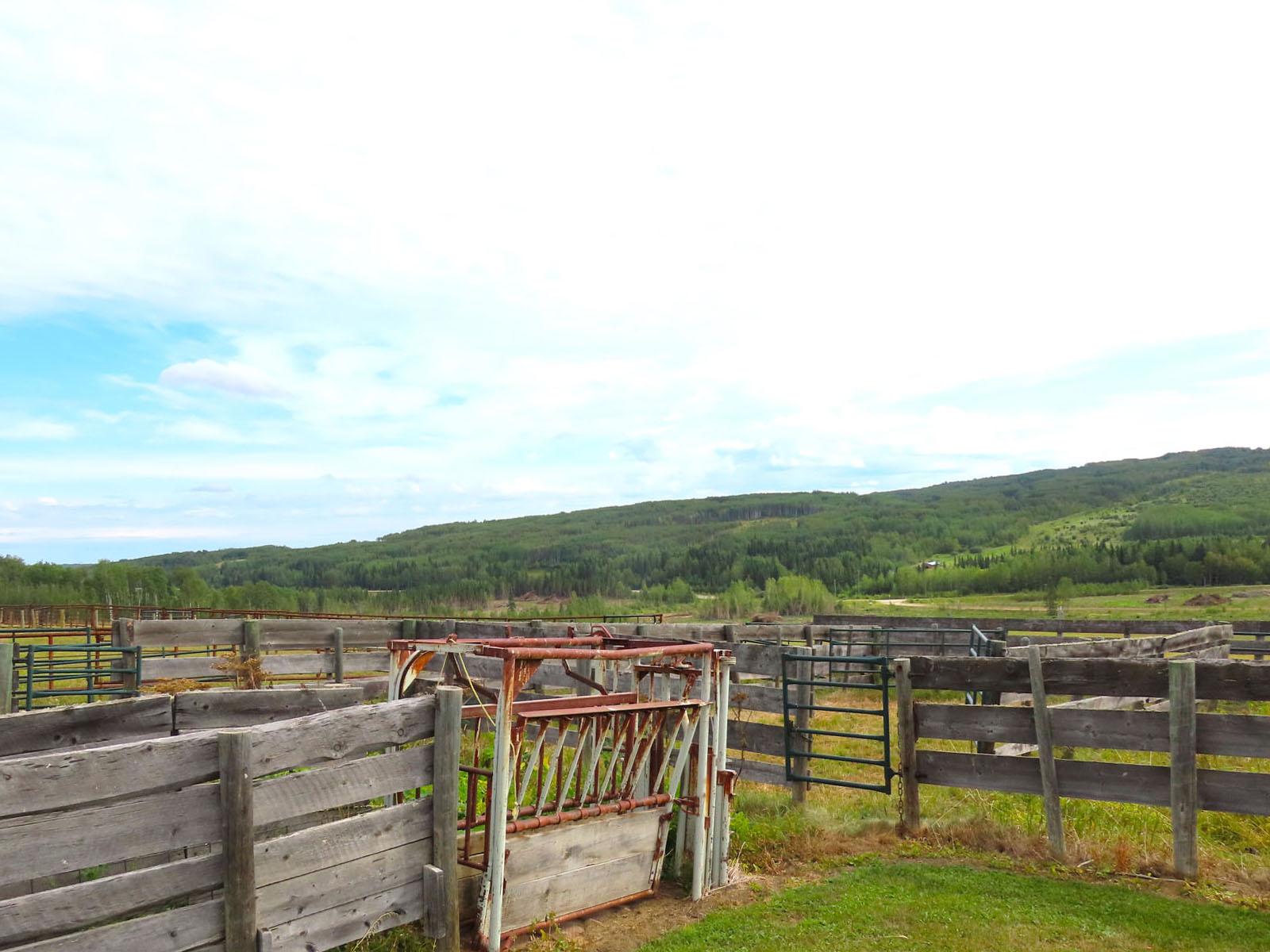 Dawson creek ranch 86