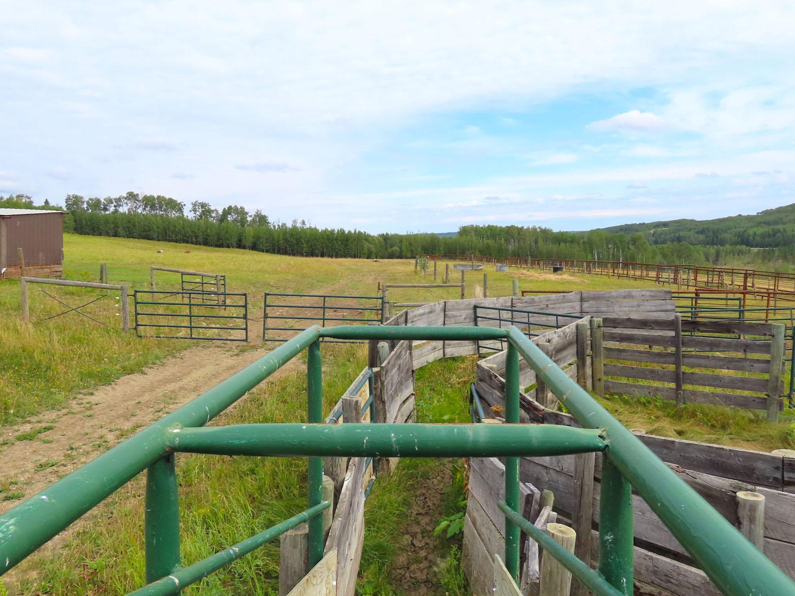 Dawson creek ranch 87