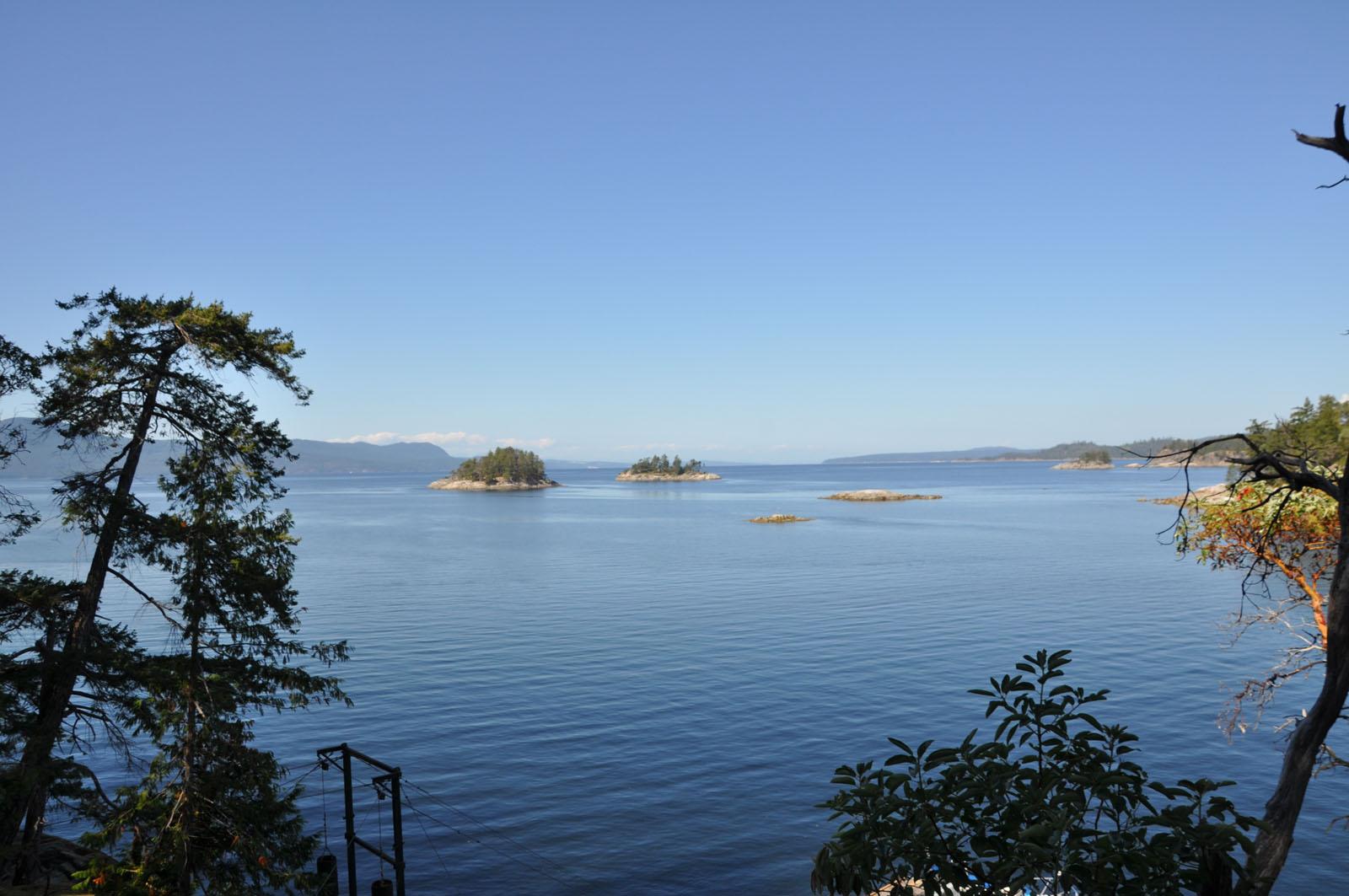 Nelson island 33