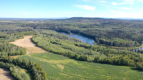 Thumb lone fir ranch 002