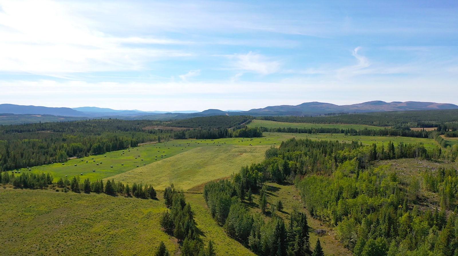 Lone fir ranch 010