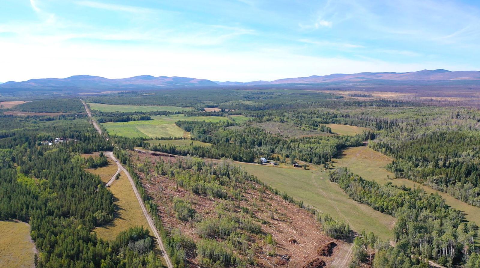 Lone fir ranch 011