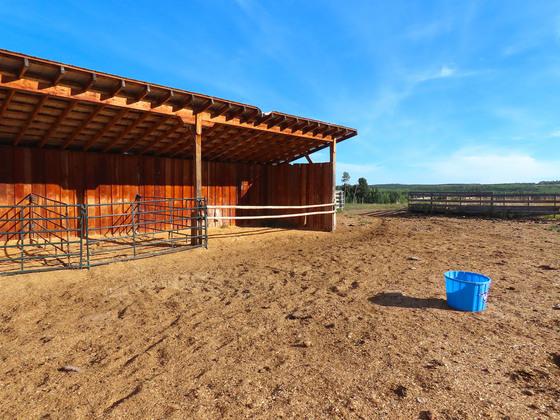 Thumb lone fir ranch 046