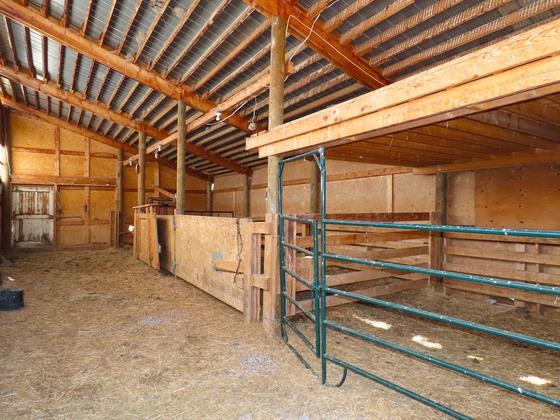 Thumb lone fir ranch 047