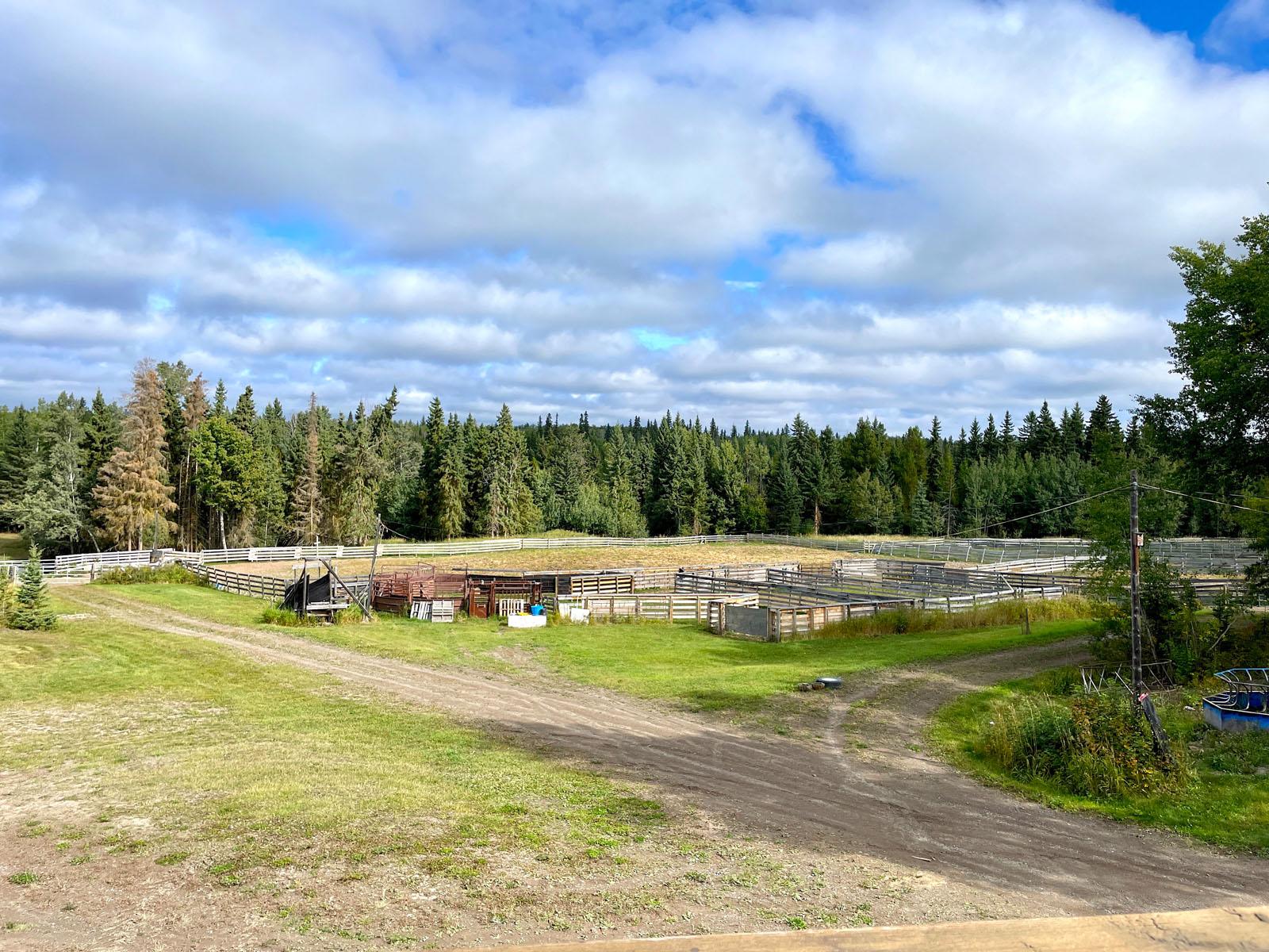 Lone fir ranch 052