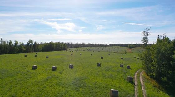 Thumb lone fir ranch 068