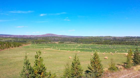 Thumb lone fir ranch 072