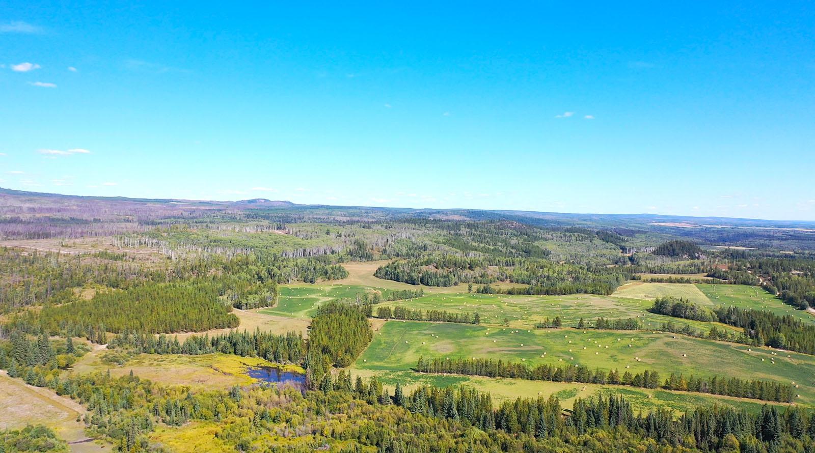 Lone fir ranch 075