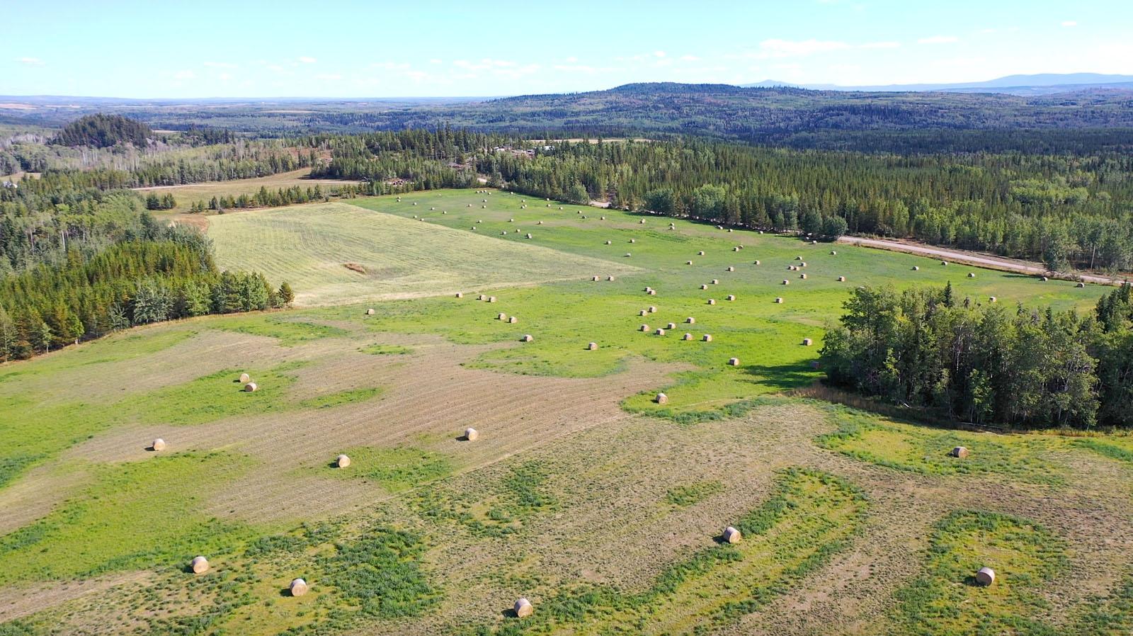 Lone fir ranch 076