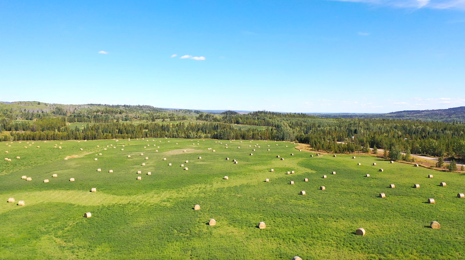 Lone fir ranch 078