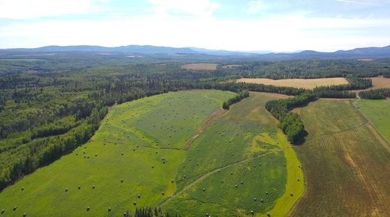 Thumb lone fir ranch 079