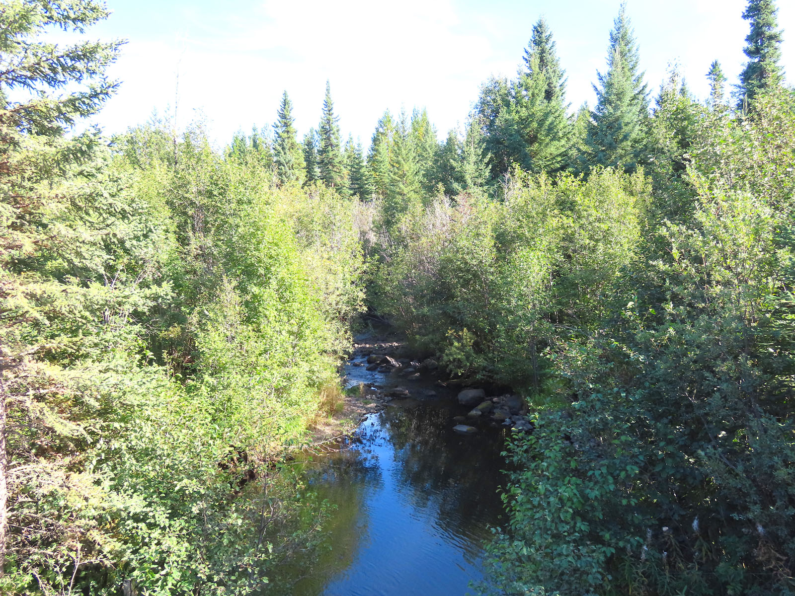 Lone fir ranch 082