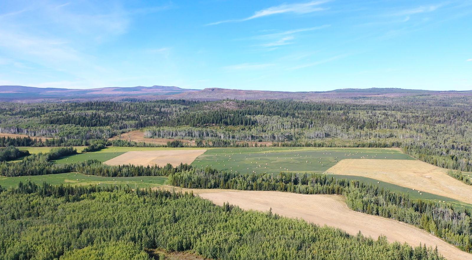 Lone fir ranch 084