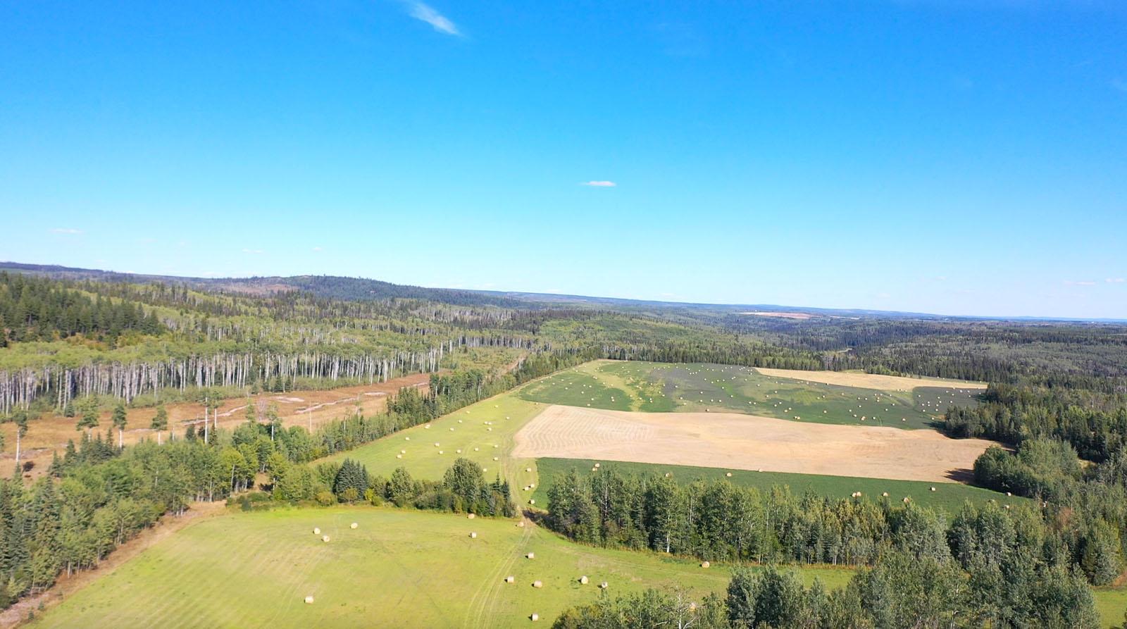 Lone fir ranch 085