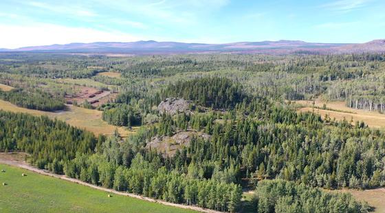 Thumb lone fir ranch 087