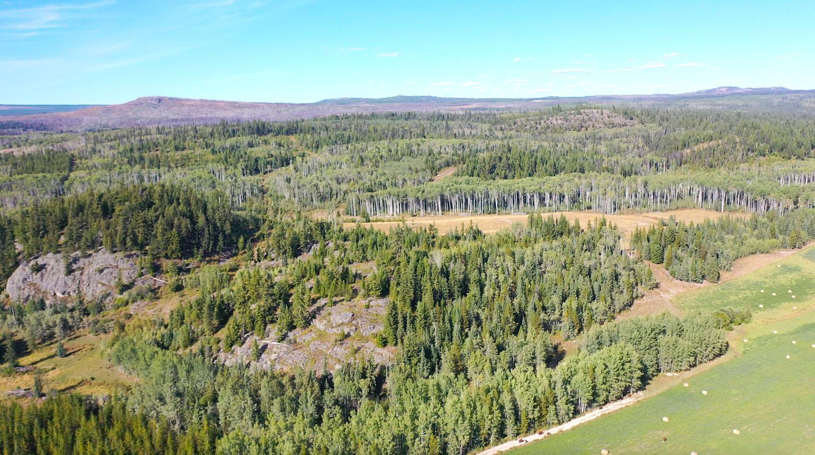 Lone fir ranch 088