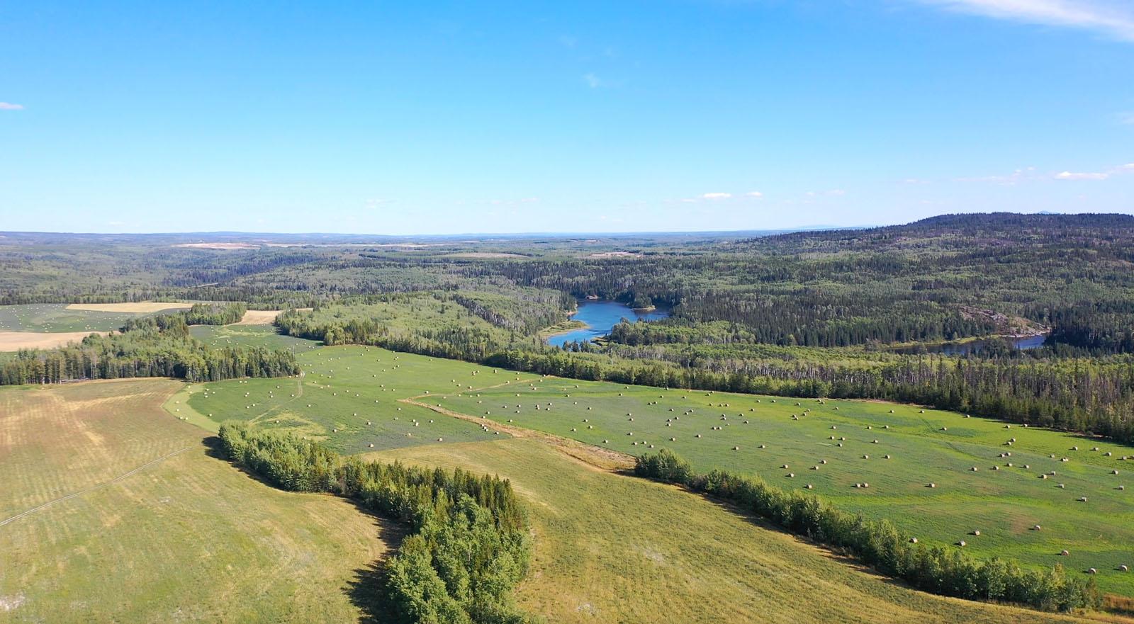 Lone fir ranch 089
