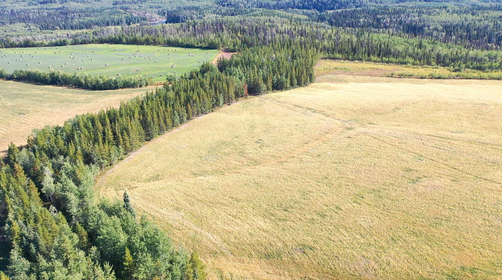 Lone fir ranch 091