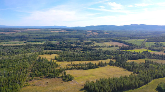 Thumb lone fir ranch 092