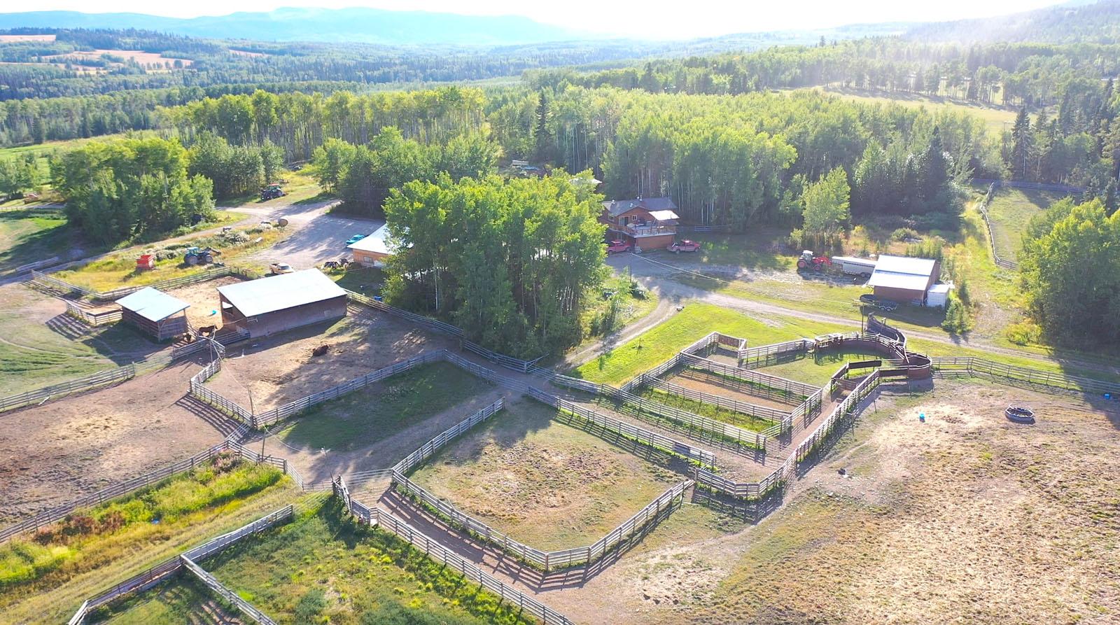 Lone fir ranch 099