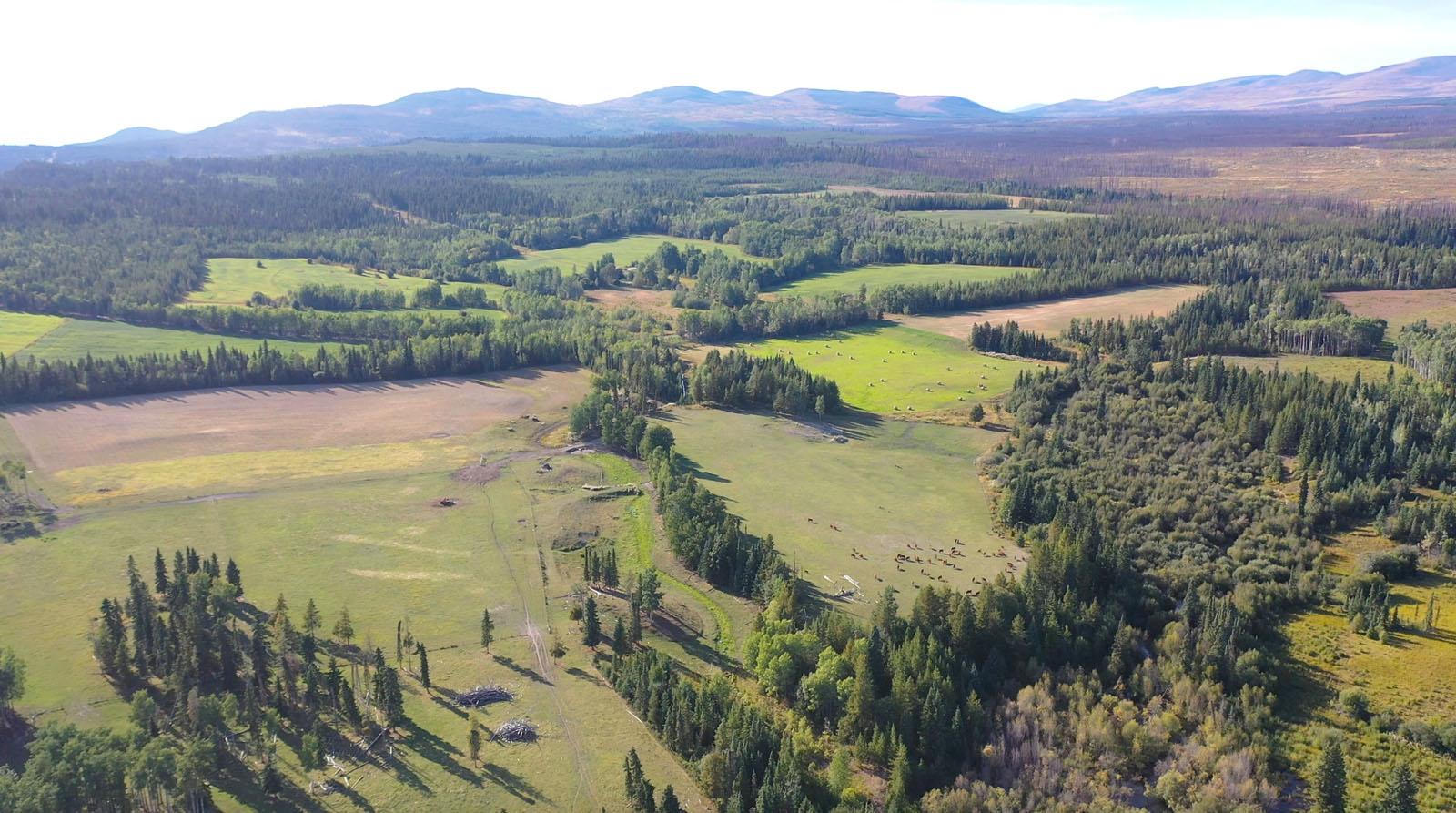 Lone fir ranch 101