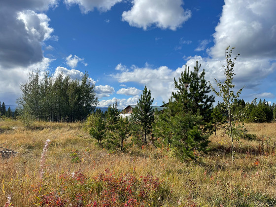 Lake View Commercial Lot in Prime Location - Nimpo Lake, BC
