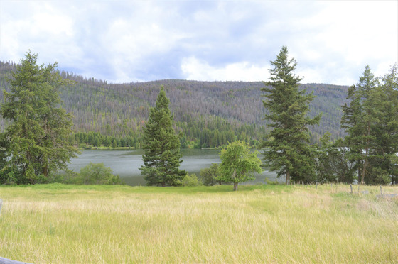 Southern Exposed Lakefront Acreage - Loon Lake, BC