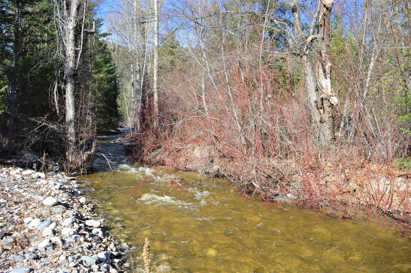 Beaverdell riverfront acreage 25