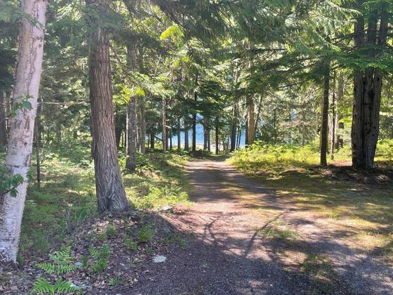 Thumb lake revelstoke estate 24