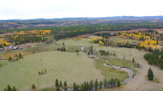 280 Acre Working Farm with Country Home, Cabin, Barns, Shop and More – Baker Creek, BC