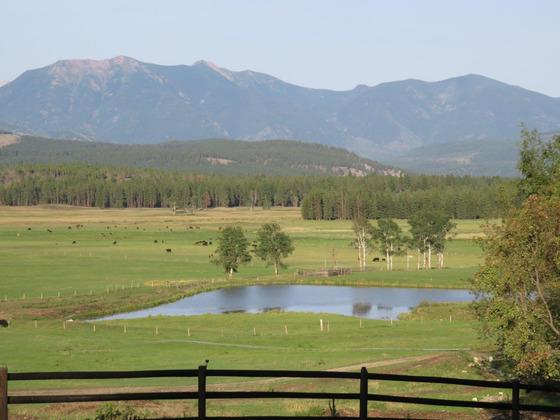 The C5 Ranch - Cranbrook, BC