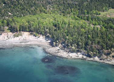 Sidney Island Oceanfront - Strata Lot 81 - Southern Gulf Islands, BC